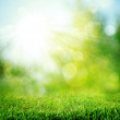Under the bright sun. Abstract natural backgrounds — Stock Photo #11347747