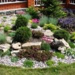 Home garden — Stock Photo #3195047