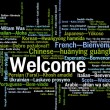 Welcome phrase words cloud concept — Stock Photo #42759781