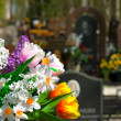 Flowers and cemetery — Stock Photo #4058200