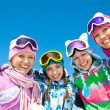 Company of friends on ski holiday — Foto de Stock   #35184529