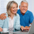 Happy Couple Using Laptop — Stock Photo #7945251