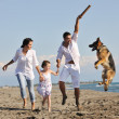 Happy family playing with dog on beach — Stock Photo #4388964