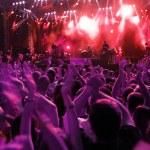 dav na rockový koncert — Stock fotografie #1755877