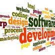 Software development concept in tag cloud — Stock Photo #22491933