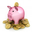 Pig and money — Stock Photo #6540633