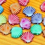 Shells — Stock Photo #5208304