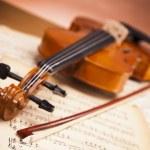 Beautiful roses and violin! — Stock Photo #14541551