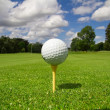 Golf ball on the course — Stock Photo #3443206