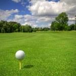 Golf ball on tee — Stock Photo #3566325