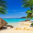 Happy New Year sign on the tropical beach — Stock Photo #37699259