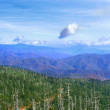 Great Smoky Mountains, USA — Stock fotografie #2259726