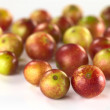 Camu Camu Fruits — Stock Photo #7932792