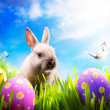 Little Easter bunny and Easter eggs on green grass — Stock Photo #9129174