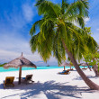 Deck chairs under palm trees on a tropical beach — Stock Photo #9186346