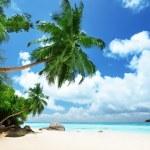 Beach on Mahe island in Seychelles — Stock Photo #14148713