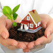Small house and plant in hands. — Stock Photo #8038650