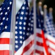 American Flag Display in honor of Veterans Day — Stock Photo #13930644