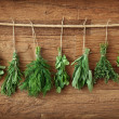 Fresh herbs — Stock Photo #8425068