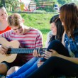 Four happy teen friends playing guitar in green summer park — Stock Photo #35714067
