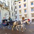 Horse drawn fiaker at the Hofburg for tourists in Vienna — Stock Photo #8893056