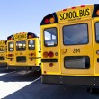 Yellow School Bus — Stok fotoğraf #12233050