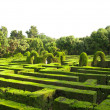 English labyrinth — Stock Photo #9884869