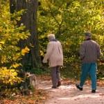 Seniors Enjoying a Walk — Stock Photo #33540007