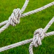 Knot rope netting with a green background. — Stock Photo #32048691