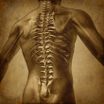 Human Back Grunge Texture — Stock Photo #9996178