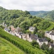 Aerial view of mosel city Trarbach with vineyards — Stock Photo #14168291