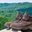 Pair of hiking boots in front of mountain forest landscape. — Stock Photo #30010913