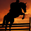 Rider on a jumping horse — Stock Photo #7865183