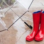 Umbella and Rainboots — Stock Photo #8969537