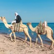 Bedouin on a camel — Stock Photo #37953181