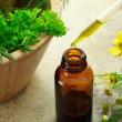 Herbal medicine with dropper bottle — Stock Photo #8258485