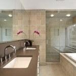 Master bath in luxury home — Stock Photo #8702484