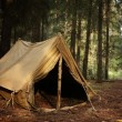 Old tent in the autumn forest, home for adventure and travel — Stock Photo #22163033