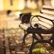 Bench in the autumn park — Stock Photo #22164023