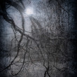 Grunge image of dark forest, perfect halloween background — Stock Photo #9501966