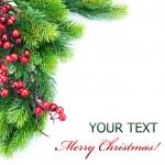 Christmas border — Stock Photo #10678643