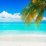 Beach — Stock Photo #11104116