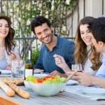 Group Of Friends Having Dinner — Photo #28206853