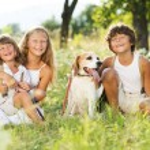 Happy kids with dog — Stock Photo #29223241