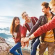 Team success concept: group of people holding hands on the top of the mountain — Stock Photo #38452945