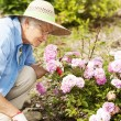 Senior woman with flowers in garden — Stock Photo #21909409