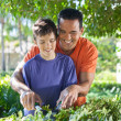 Father and son doing yard work together. — Stock Photo #25966253