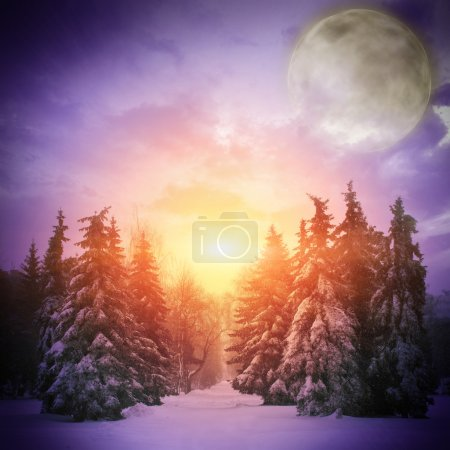 Beautiful winter landscape with Christmass trees