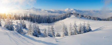冬山的全景
