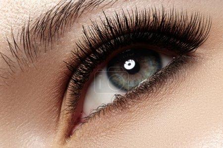 美丽的女人眼睛与自然长长的睫毛。射击的宏。健身和 spa、 保健和化妆品。黑色睫毛膏的睫毛上的天然化妆。长自然睫毛_高清图片_邑石网